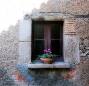 anotherlovely-window