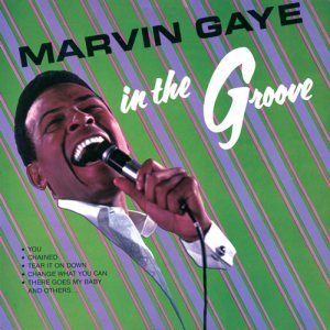 MARVIN In the Groove